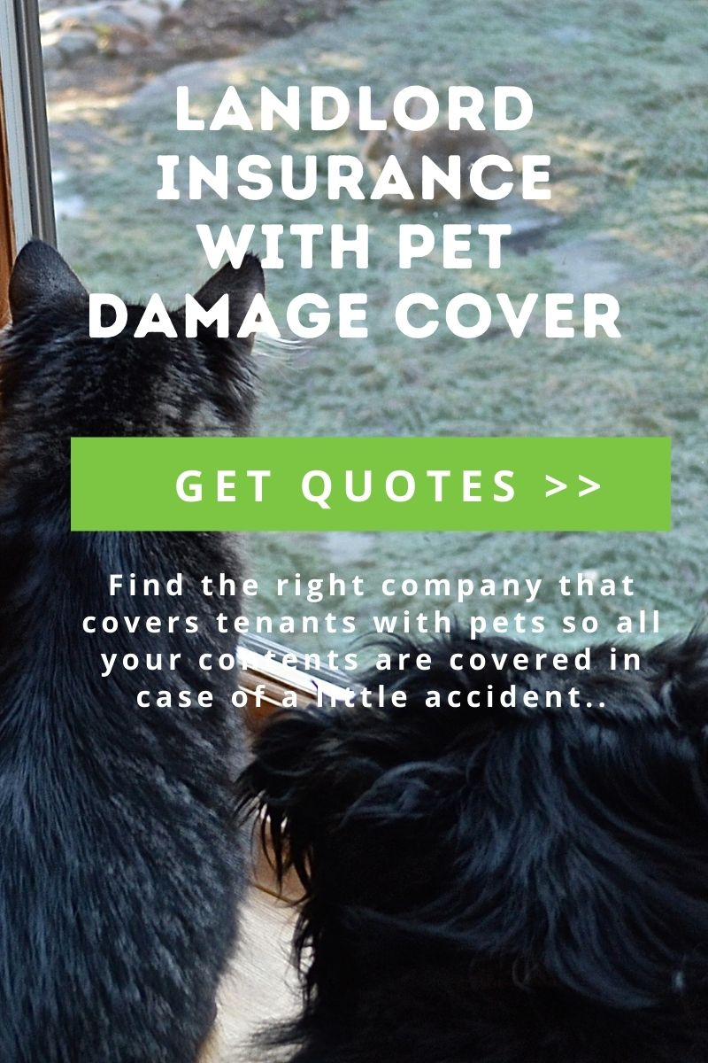 Guide on landlord insurance with pet damage cover*